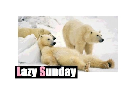 Lazy Sunday